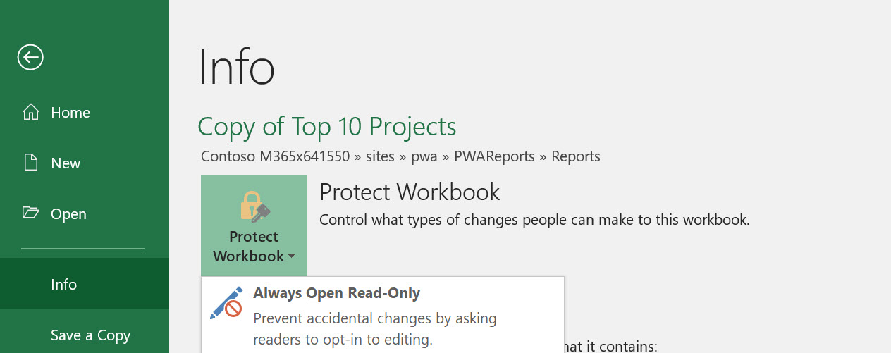 Making Project Online Excel Reports Read-Only | Sensei